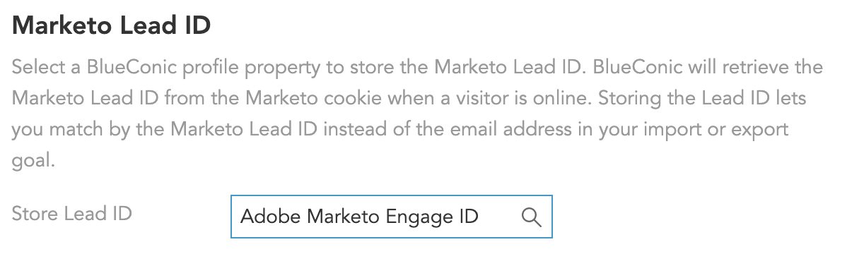 Adobe-Marketo-Engage-Connection-matching-identifier-LeadID.png