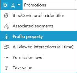 How do I export text to other marketing systems in BlueConic connections?