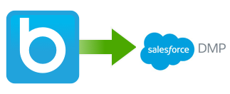 How to connect Salesforce DMP Krux customer data to BlueConic