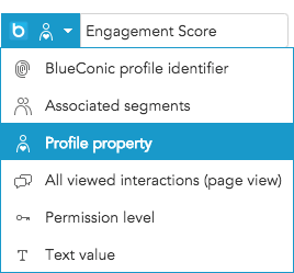 How to export customer marketing data between Adobe Target and BlueConic
