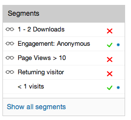 How do I see the customer Segments widget in BlueConic?