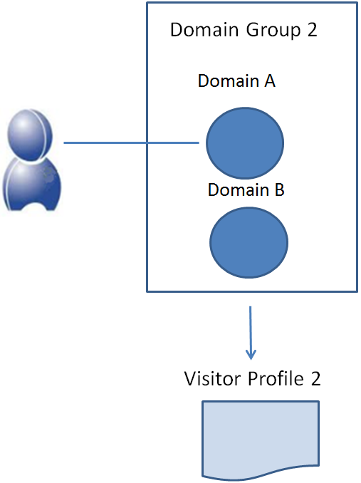 How do domain groups work in BlueConic?