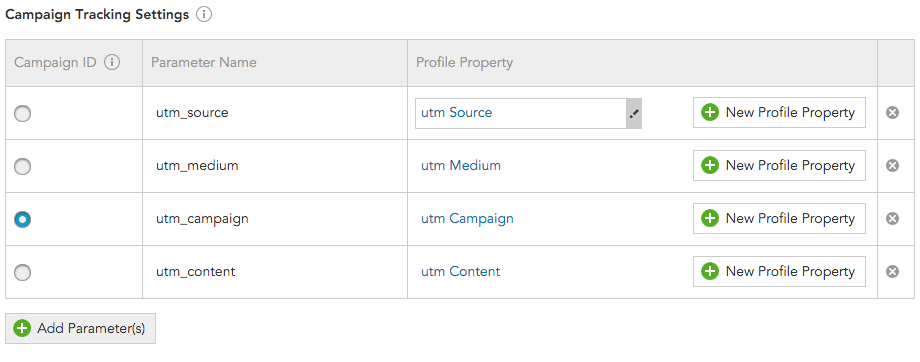 How to track marketing Campaign IDs in the BlueConic CDP